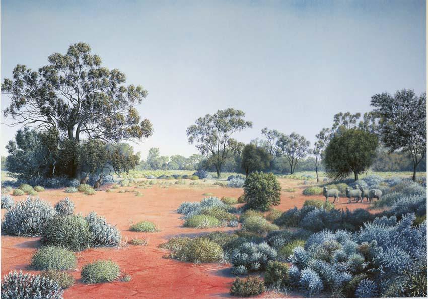 Richard Weatherly Portfolio Red Joes